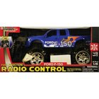 Group Toys - 1:16 Scale R/C 4x4 Truck